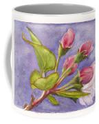 Apple Blossom Buds Coffee Mug