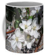 Apple Blossoms 2 Coffee Mug