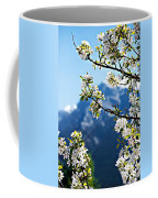 Apple Blossoms Frame The Rockies Coffee Mug