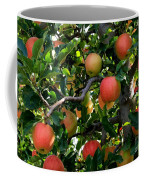 Apple Harvest - Digital Painting Coffee Mug