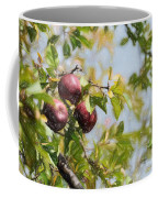 Apple Pickin' Time Coffee Mug