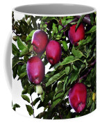 Apple Picking Time Coffee Mug