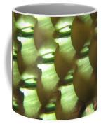 Apples Abstract 3 Coffee Mug