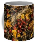 Apples In Fall Coffee Mug