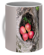 Apples In Tree Coffee Mug