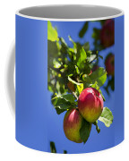 Apples On Tree Coffee Mug