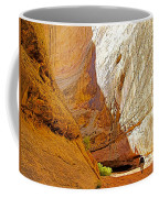 Approaching The Shadow In Grand Wash In Capitol Reef National Park-utah Coffee Mug