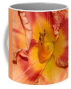 Apricot Daylily Close-up Coffee Mug