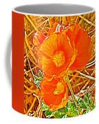 Apricot Globemallow In Vermilion Cliffs National Monument-arizona Coffee Mug