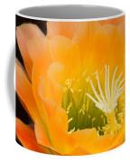 Apricot Glow Coffee Mug