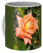 Apricot Nectar Rose Coffee Mug