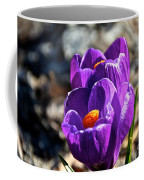 April Crocus' Coffee Mug