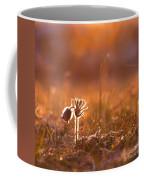April Morning Coffee Mug