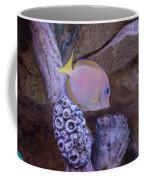 Aquarium Impression Coffee Mug