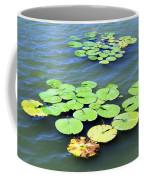 Aquatic Plants Coffee Mug