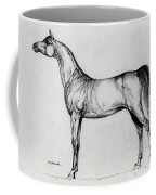 Arabian Horse Drawing 34 Coffee Mug