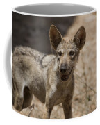 Arabian Wolf Canis Lupus Arabs Coffee Mug