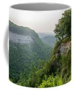 Archery Field Overlook Coffee Mug