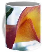 Archimedes Inspiration Coffee Mug