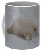 Arctic Fox Coffee Mug