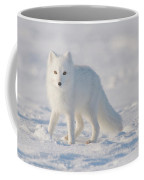 Arctic Fox Out On The Pack Ice Coffee Mug