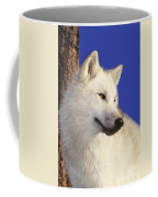 Arctic Wolf Portrait Wildlife Rescue Coffee Mug