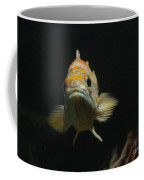 Are You Looking At Me? Coffee Mug