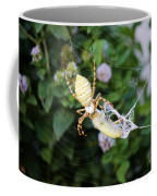 Argiope Spider Top Side Horizontal Coffee Mug