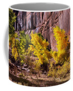 Arizona Autumn Colors Coffee Mug