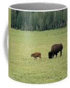 Arizona Bison Coffee Mug