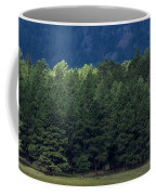 Arizona Forest Coffee Mug