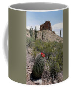Arizona Icons Coffee Mug