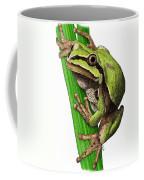 Arizona Tree Frog Coffee Mug