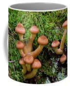 Armillariella Polymyces Coffee Mug
