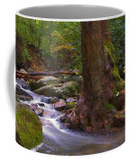 As The River Runs Coffee Mug