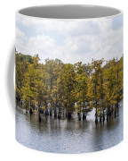As The Seasons Change Coffee Mug