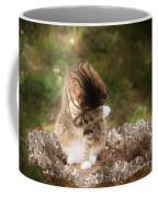 Ashamed Coffee Mug