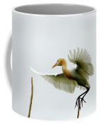 Asia Coffee Mug