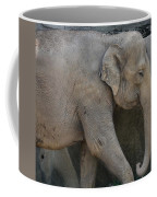 Asian Elephant Coffee Mug