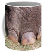 Asian Elephant Foot Coffee Mug