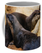 Asian Otters Coffee Mug
