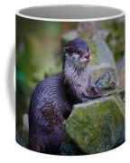 Asian Small Clawed Otter Coffee Mug