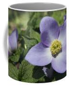 Asian Woods  1513 Coffee Mug