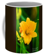Stella De Oro Lilly Coffee Mug