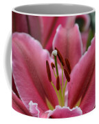 Asiatic Pink Coffee Mug