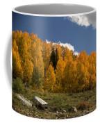 Aspen On The Road To Telluride Dsc07397 Coffee Mug