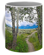 Aspen Trees On Trail To Jackson Lake At Willow Flats Overlook In Grand Teton National Park-wyoming  Coffee Mug