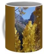 Aspen Window Coffee Mug
