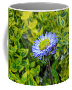 Aster Daisy Coffee Mug