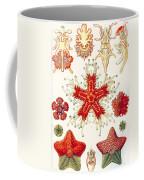 Asteridea Coffee Mug